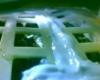 ¡Brota el algodón!: El primer experimento biológico de la historia en la Luna